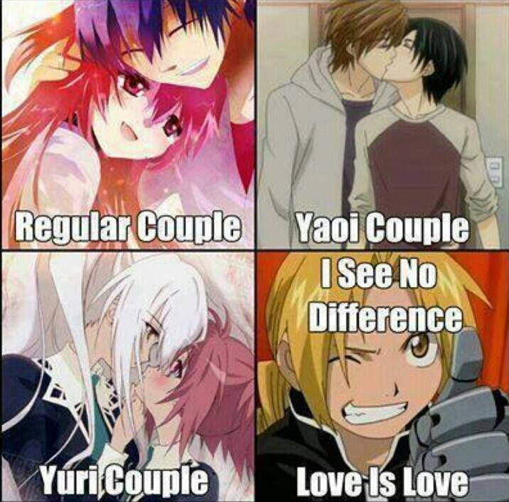 Regular couple, yaoi couple, yuri couple. I see no difference, love is love.
